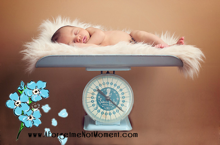 Greensboro_Newborn_Photographer_PForeman